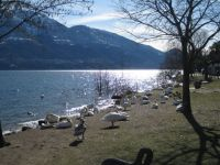 Ascona09 004