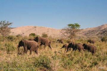 Sudafrica03 185