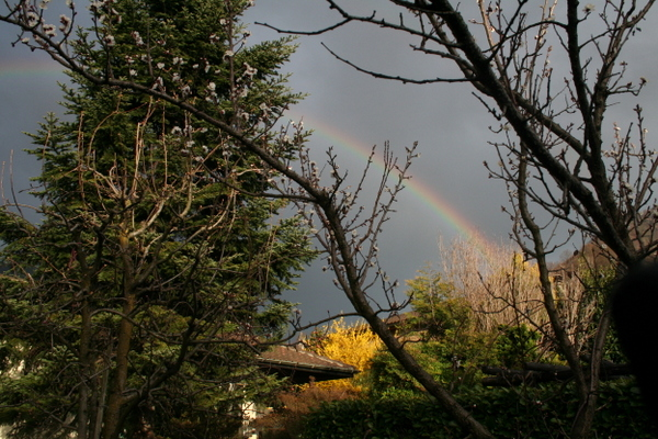 Regenbogen/F.Ramsauer