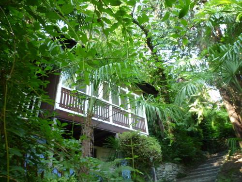 Ein Haus im Park auf dem Monte Verità./ Una casa nel parco sul Monte Verità. /House in the park on the Monte Verità.