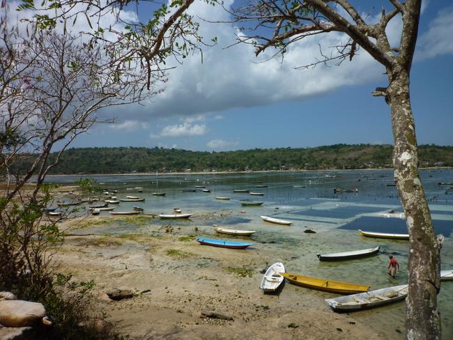 Zur Überfischung in Senegal