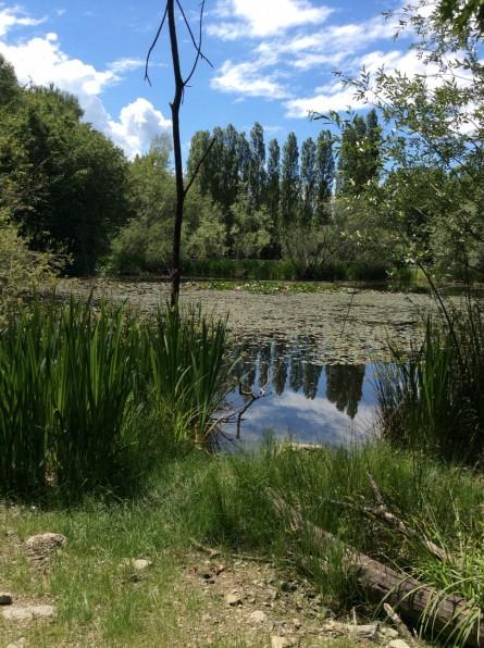 Unser Park/Our Park/
