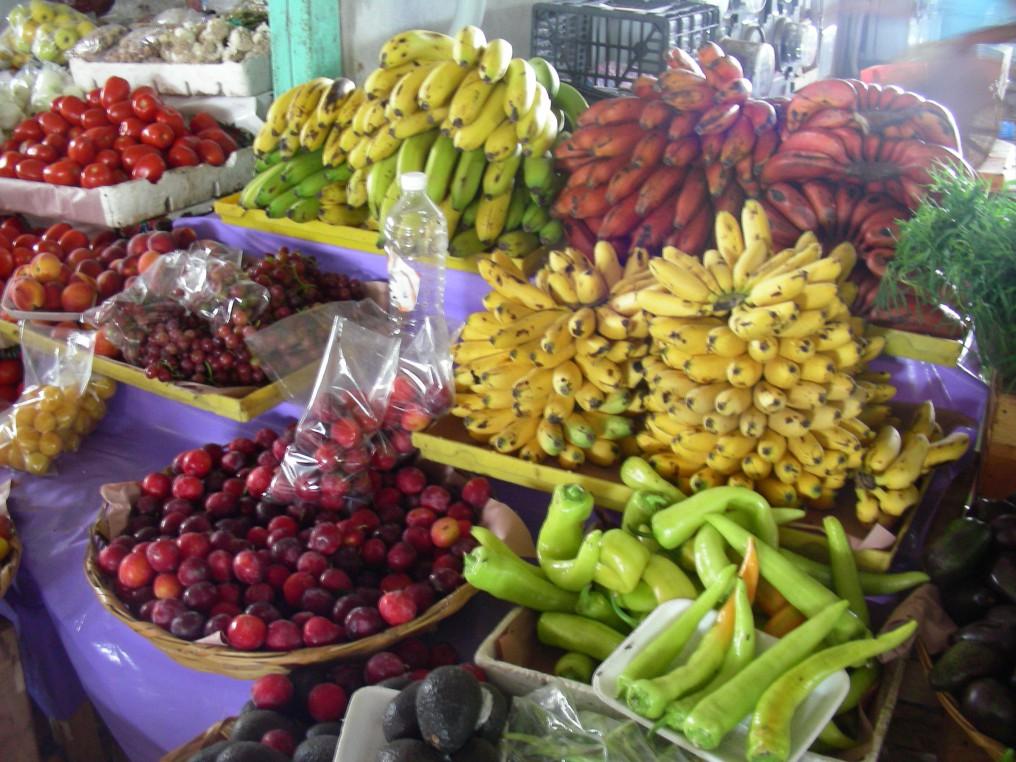 Einfach nur Früchte/Solamente frutta/just fruti!