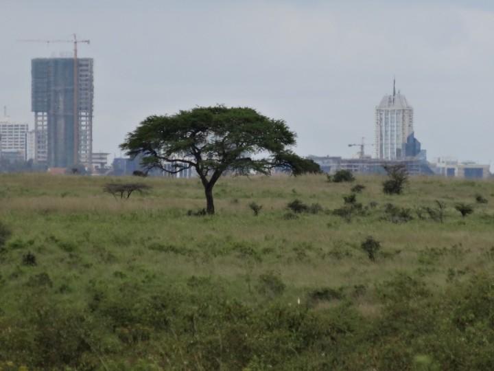Skyline of Nairobi/Hans Keller