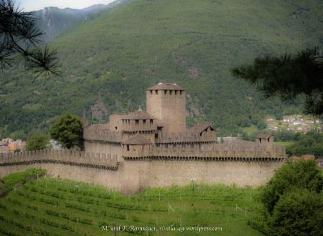 https://rivella49.wordpress.com/2016/09/22/castelli-medievali-e-la-mianostra-storiabellinzonadei/